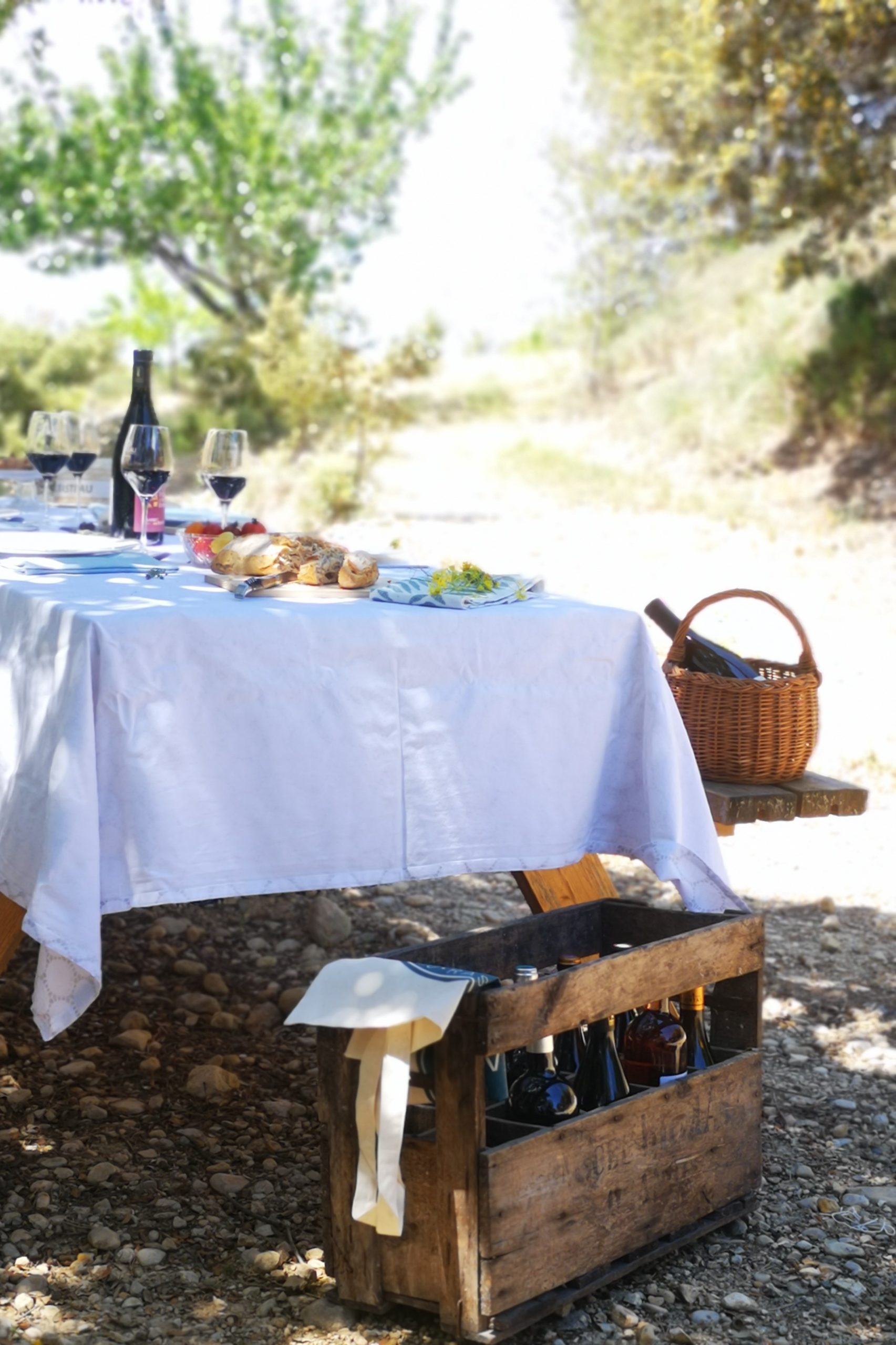 Chiefs and                       Gastronomic Picnic